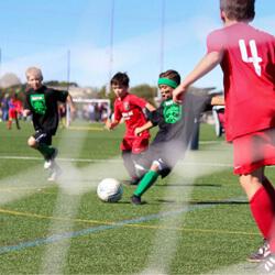 footballexpress foci tabor home
